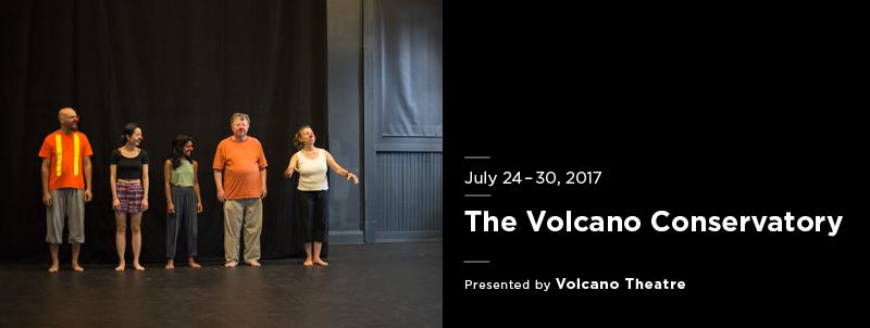 Volcano Conservatory 2017